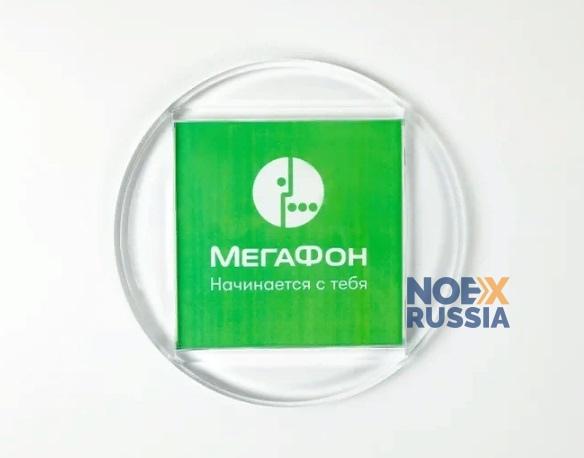 monetnica dlya kassy Focus steklo plastik kupit'